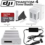 DJI Phantom 4 Power Bundle: Includes Phantom 4 Intelligent Flight Battery, Charging Hub, Car Battery Charger, SanDisk 64GB MicroSD Card & eDigitalUSA Cleaning Kit