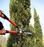 TABOR TOOLS B212A Telescopic Hedge Shears with Wavy Blade and Extendable Steel Handles. Extendable Manual Hedge Clippers for Trimming Borders, Boxwood, and Tall