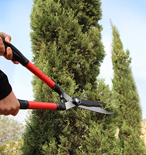 """TABOR TOOLS B212 Extendable Hedge Shears for Trimming Borders, Boxwood, and Bushes. Telescopic 25""""+ 8"""" Hedge Clippers with Wavy Blade and Long Telescoping Power-Lever Steel Handles."""
