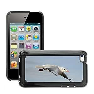 Etui Housse Coque de Protection Cover Rigide pour // M00116188 Gaviota Pájaro Volar Libertad Sky Lake // Apple ipod Touch 4 4G 4th