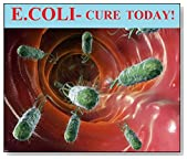 E. coli: The two minute E.coli cure--get pathogenic E.coli out of your gut TODAY!