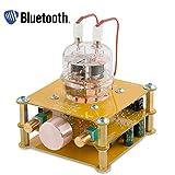 Nobsound Little Bear Mini Bluetooth FU32 Vaccuum Tube Preamp HiFi Audio Preamplifier Treble Bass Tone Control RCA