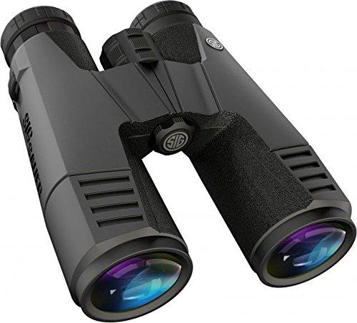 Sig Sauer Zulu 9 Close Bridge AK Prisms HDX Glass Binoculars, 11 x - Firearms Sig