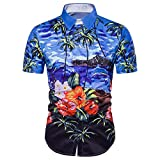 Jushye Hot Sale!!! Men s Shirts, Summer Casual Hawaiian Shirts Print T-Shirt Sports Short Sleeve Tees Blouse Tops (Blue, XL)