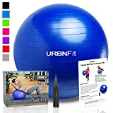 Exercise Ball (Multiple Sizes) for Fitness, Stability, Balance & Yoga - Workout Guide & Quick Pump Included - Anit Burst Professional Quality Design (Blue, 45CM)