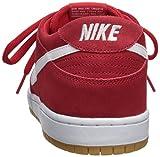 Nike SB Dunk Low Pro IW