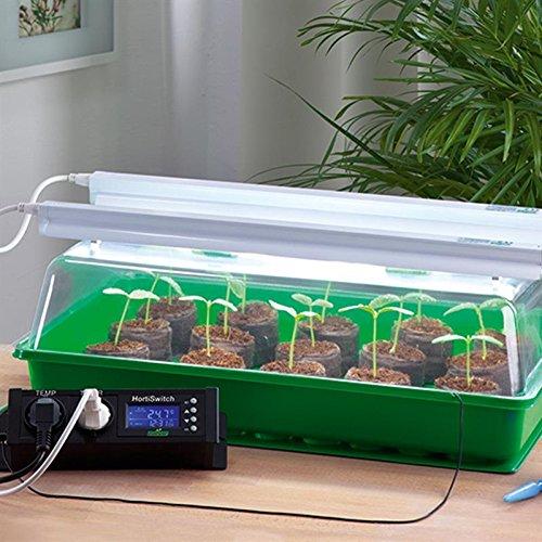 Romberg Zimmergewachshaus Mit Zwei Lampen Thermodog Und Thermostat