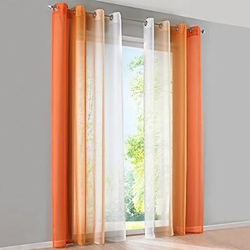 Reinefleur Lot de 2 pcs Rideau Voilage Souple Dégradé de Couleurs Rideaux De Fenêtre en Voile Décoration pour Chambre Salon Housewarming