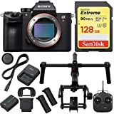 Beach Camera Sony a7R III Full-frame Mirrorless Interchangeable Lens 42.4MP Camera with DJI Ronin M 3-Axis Brushless Gimbal Stabilizer and Sandisk 128GB SDXC Memory Card Bundle