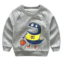 Baby Boys' Sweaters Boys Dinosaur Cartoon Cotton Sweater Long Sleeve Pullover Hoodie Activewear Thin 4-5 Year Old Grey