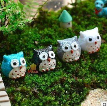 Treasure-House - Adorno en miniatura para jardín de hadas o casa de muñecas, diseño de búhos, 20 piezas: Amazon.es: Productos para mascotas