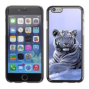 Stuss Case / Funda Carcasa protectora - Winter Snow Tiger White Blue Cold - Apple Iphone 6 Plus 5.5