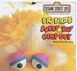 : Big Bird's Sunny Day Camp Out-Original Cast