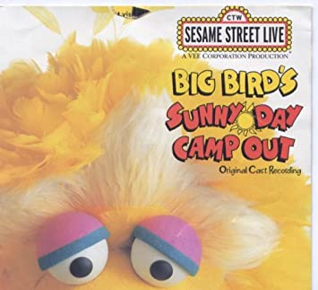 Sesame Street Live Big Bird S Sunny Day Camp Out Original