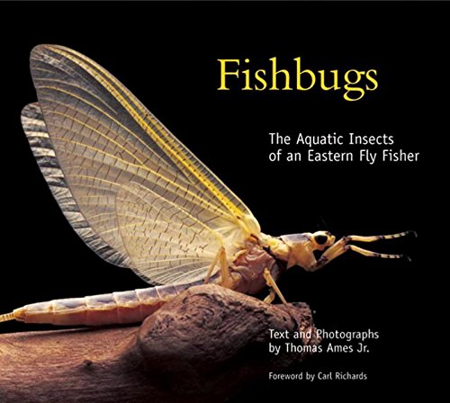 Download Fishbugs: The Aquatic Insects of an Eastern Flyfisher pdf