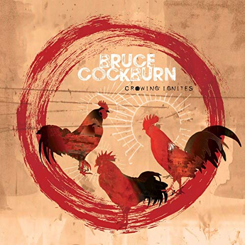 List of the Top 10 bruce cockburn cds you can buy in 2020