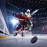 Golden Sport Ice Hockey Pucks, 12pcs, Official