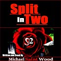 Split in Two Audiobook by Michael Wood Narrated by Michael Saint Wood