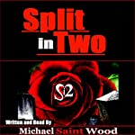 Split in Two | Michael Wood