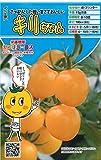 キリちゃん【ミニトマトの種】(8粒)