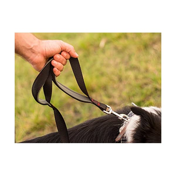 (Black/Red/Grey) – Leashboss 3X – Two Handle Dog Leash with Extra Traffic Handle – Heavy Duty Double Padded Handle Lead… Click on image for further info. 2