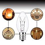 (12 Pack) Salt Rock Lamp Bulb, 15 Watt Light Bulbs