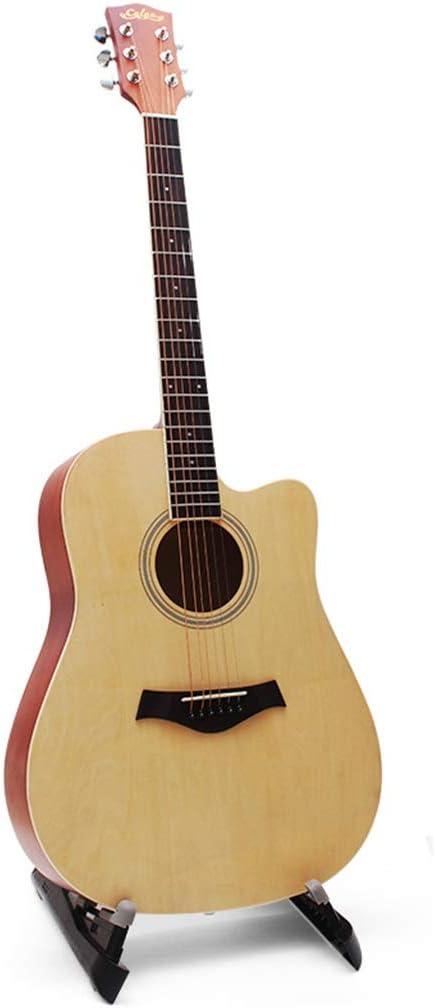 Steel-string Acoustics Guitarra acústica para Principiantes ...