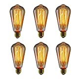Edison Bulbs, HOMREE Vintage Squirrel Cage Filament Incandescent Antique Light Bulb for Home Light Fixtures E26/E27 Base ST64 110V - 6 Pack