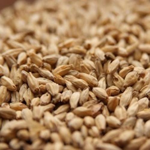 2 Row Barley (Rahr 6-Row 10 lb)