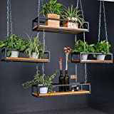 WGX Growers Hanging Basket Planter with Chain Indoor Outdoor Flower Plant Pot Home Garden Balcony Bar Cafe Decoration (L31.5''XW10''XH6'')