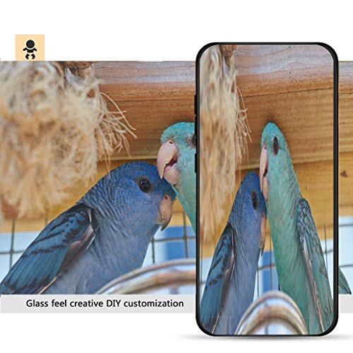 iPhone 7p / 8p Ultra-Thin Phone case Family Portrait of Blue and Turquoise Barred Parakeet Close up Resistance to Falling, Non-Slip, Soft, Convenient Protective case