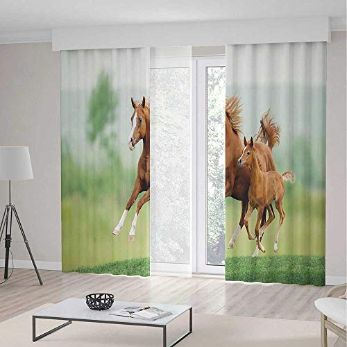 (TecBillion Window Blackout Curtains,Horse Decor,for Bedroom Living Dining Room Kids Youth Room,Running Chestnut Horses Mare and Foal Meadow Scenic Summer Day Outdoors,196Wx83L Inches)
