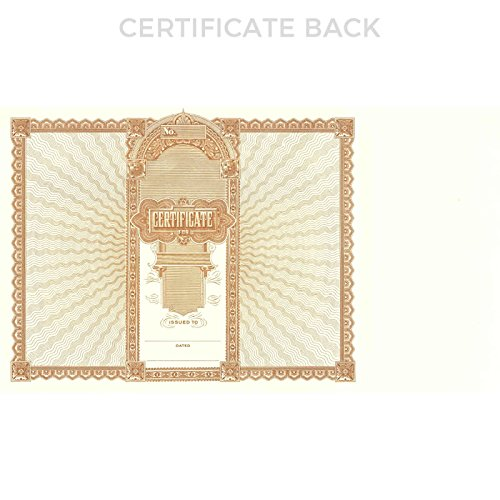 Goes 505 Certificate - Pack of 100