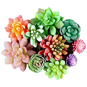 Dandevo 10 Pcs Unpotted Fake Succulent Flowers Plant Assorted Colorful Artificial Succulents Picks in Bulk Realistic Plastic Faux Silk Stems for Bouquet Terrarium Home Decor Large and Small 28
