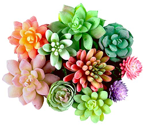 (Dandevo 10 Pcs Unpotted Fake Succulent Flowers Plant Assorted Colorful Artificial Succulents Picks in Bulk Realistic Plastic Faux Silk Stems for Bouquet Terrarium Home Decor Large and Small)