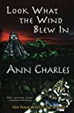 look what the wind blew in a dig site mystery volume 1