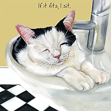 Black And White Cat In A Wash Basin Sink BLANK Birthday Card Funny Cards For