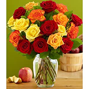 18 Autumn Roses (with FREE glass vase) - Flowers