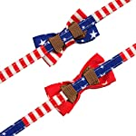 PAWCHIE American Flag Cat Collars Breakaway, 2 Pack Bow Tie Collar for Cats with Bell, Adjustable 10