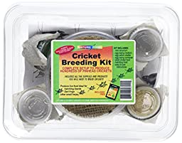 Nature Zone SNZ56411 Cricket Breeding Kit