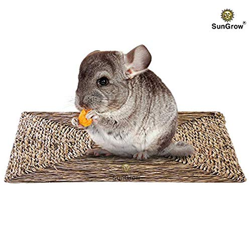 SunGrow Seagrass Rabbit Mat, Protect Paws from Wire Cage, Treat Bunny's Sore Hocks, Handmade Woven Play Bed, Edible Chew Toy, Place in Cage or on Floor, 1 pc
