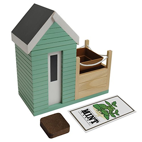 Bunkerbound Beach Hut Planter Gift - The By Beach Hut