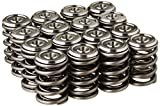 Skunk2 344-05-1300 Alpha Valve Spring and Titanium