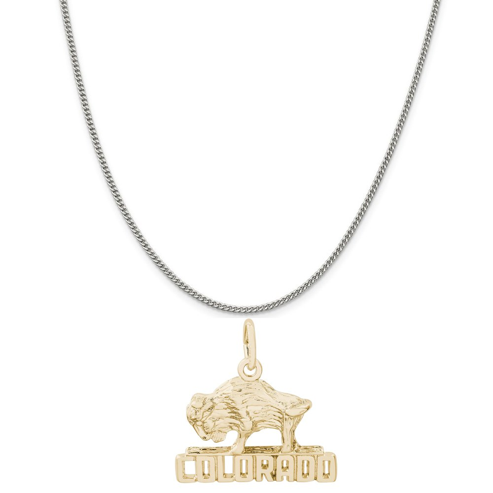 Rembrandt Charms Two-Tone Sterling Silver Colorado Bison Charm on a Sterling Silver 16 18 or 20 inch Rope Box or Curb Chain Necklace