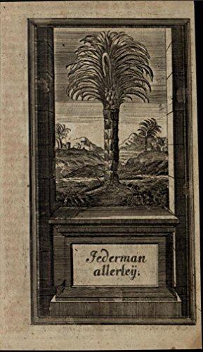 Tropical Coconut Tree Hills Distant Village 1740 charming unusual antique print ()