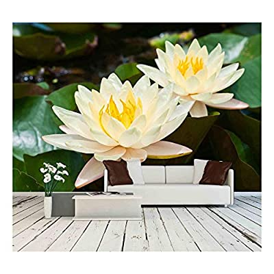 Two White Lotus, Quality Artwork, Delightful Artistry