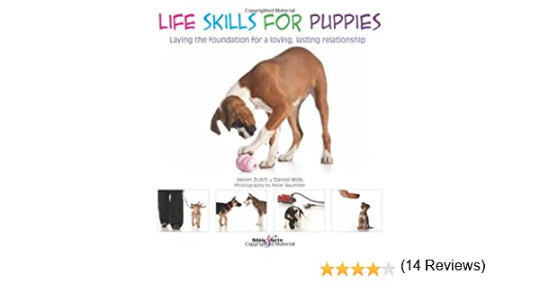 Life Skills for Puppies: Laying the Foundation for a Loving ...