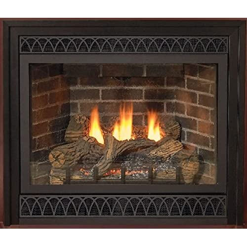Direct Vent Gas Fireplaces: Amazon.com