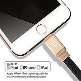 Perilogics Apple MFi Certified Lightning Cable - Gold