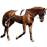 Hunters Saddlery Ultimate Horse Lunging Training Aid System Lunge Equipment (Cob/Horse, Black)